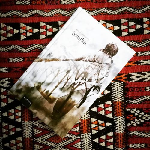 SONJKA, književna preporuka - piše Ilina Cenov